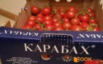 """Ermənistana """"Karabax"""" pomidoru idxal olunur - Türkiyədən"""