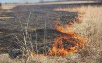 Göyçayda 60 hektar biçilmiş taxıl sahəsi yanıb