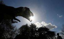 ABŞ-da dinozavrların yeni növü kəşf edilib
