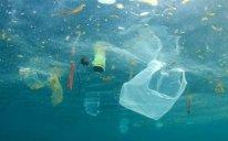 2050-ci ildə okeanda plastik tullantıların miqdarı balıq sayından daha çox olacaq - PROQNOZ