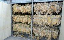 Azərbaycan tütün idxalınına çəkdiyi xərci 12% azaldıb