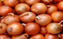 İran soğan ixracına qadağanı ləğv edib