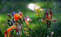 Ölkə ərazisində qeyri-sabit hava müşahidə olunur – Külək, yağış, dolu…