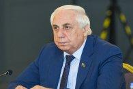 MSK 74 saylı Lənkəran kənd seçki dairəsinin nəticələrini ləğv edib