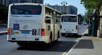 Bakıda xəttə 24 saat işləyən avtobuslar buraxıla bilər