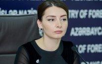 Azərbaycan beynəlxalq məhkəməyə müraciət edəcək - XİN