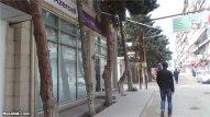 Xətai rayonunda yaşıllıqlar niyə məhv edilir?  REPORTAJ+FOTOLAR