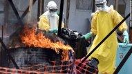 Afrikada Ebola  dəhşəti  - 11207 ölü
