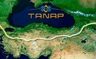 TANAP-ın yeni direktoru təyin olundu