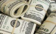 Dollar hərracda bahalaşdı