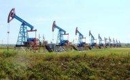 Azərbaycan neftinin qiyməti 55 dolları keçdi
