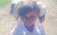 5 yaşlı Luizanın - Fotoları