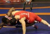 Güləşçilərimiz dünya çempionatında 4 medal qazandı