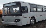 173 saylı avtobus yolu keçmək istəyən piyadanı vurdu