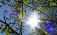 İstirahət günlərinin hava proqnozu açıqlandı