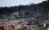 Yunanıstanda meşə yanğınları nəticəsində 99 nəfər ölüb