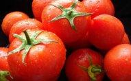 Rusiya 15,5 ton pomidoru Azərbaycana qaytardı