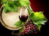 Azərbaycanda şərabın alkoqollu içki sayılmaması təklif edilir
