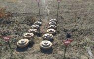 ANAMA: Ölkənin 54,9 min hektar ərazisi partlayıcı vasitələrdən təmizlənilıb