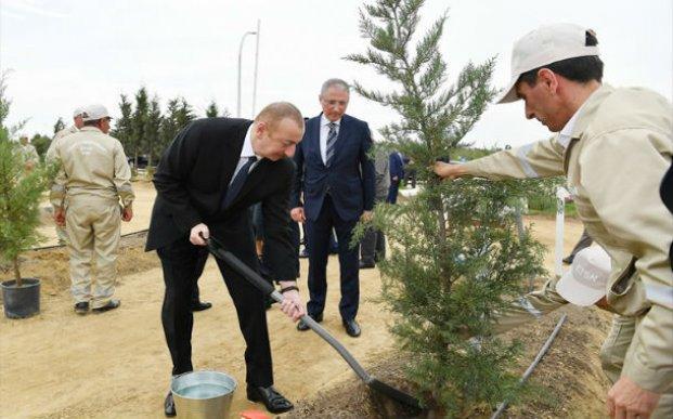 Prezident İlham Əliyev Heydər Əliyevin doğum gününə həsr olunan ağacəkmə aksiyasında iştirak edib – YENİLƏNİB