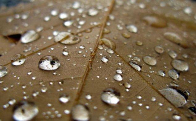 Sabah hava küləkli olacaq, yağış yağacaq