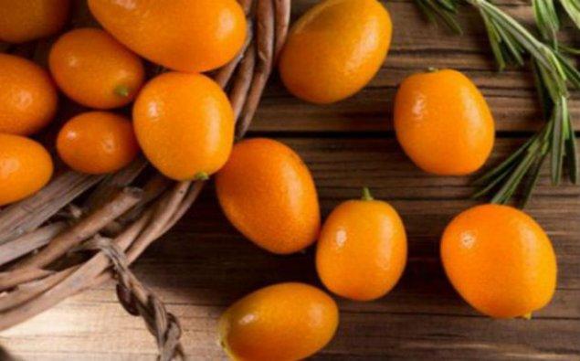 Sitrus meyvələri istehsalının həcmi 100 min tona çatdırılacaq