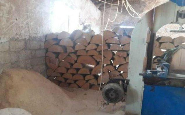 Qubada sexdə qanunsuz yolla əldə edilmiş meşə materialı aşkarlandı