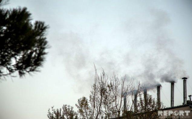Nazirlik şadlıq saraylarına qarşı reydə başladı  - FOTO