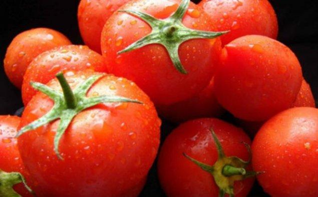 Azərbaycan Rusiya bazarına pomidor ixracını artırıb