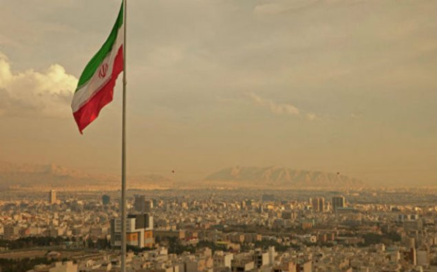 İran it və pişiklər üçün yem idxalını qadağan edib