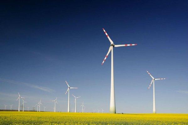 Dünya üzrə külək enerjisinin potensial gücü açıqlanıb