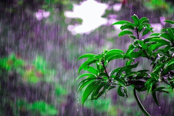 Sabah hava dəyişkən buludlu olacaq, yağış yağacaq