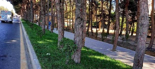 Nəsimi rayonunda abadlıq işləri davam etdirilir  - FOTOLAR