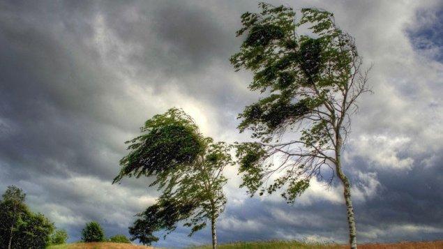 Sabahdan güclü külək əsəcək, intensiv yağış yağacaq (XƏBƏRDARLIQ)