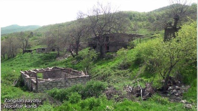 Zəngilanın Nəcəflər kəndindən görüntülər (VİDEO)