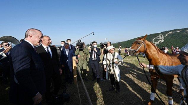 """Ərdoğana hədiyyə edilən """"Zəfər"""" adlı at (FOTOLAR)"""